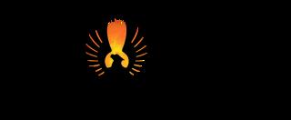 Phoenix Liners